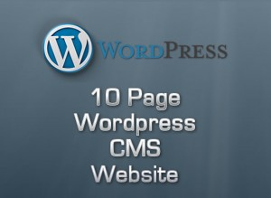 10 Page Wordpress CMS Website