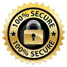 SSL Certs - 100% Secure Data Transfer with up to 256bit encryption